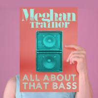 All About That Bass Single