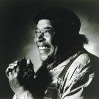 James Cotton Blues Band With Guest