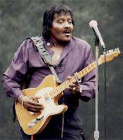 Albert Collins and The Heartbreakers